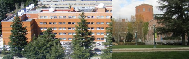 Pictures of the Faculty of Physical Sciences and of the CFMAC
